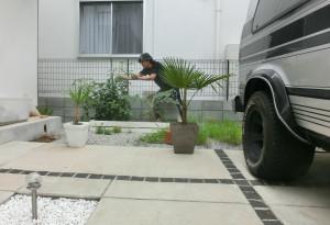 小川氏 家庭菜園